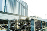 Haohan 까만 간단한 산업 주거 안전 정원에 의하여 직류 전기를 통하는 강철 담 21