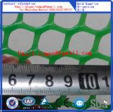 Прямая связь с розничной торговлей пластичной плоской фабрики сетки