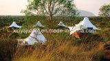 صامد للمطر, نار - [رتردنت], [أوف-بروتكأيشن] عرس خيمة مع أرضية خشبيّة لأنّ إستعمال خارجيّ