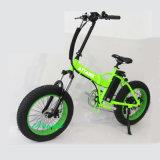 뚱뚱한 타이어를 가진 베스트셀러 Foldable 눈 산 전기 자전거