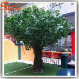 Вал баньяна Ficus поставкы Китая искусственний поддельный пластичный