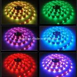 높은 루멘 LED 지구 빛 120LEDs/M 2835의 LED 지구 점화