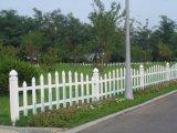 백색 색깔 정원 담