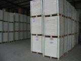 Placa de marfim marfim (C1S) / Placa de caixa dobrável