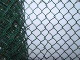 Rete metallica di collegamento Chain dell'acciaio inossidabile per l'esportazione