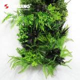 حديقة تصميم متأخّرة خارجيّ اصطناعيّة خضراء ألواح جدار