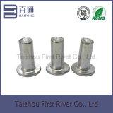 6X24mm flacher fester Aluminiumhauptniet