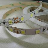 휴일 훈장을%s 5054 60 LEDs/M LED 지구