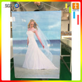 Знамя PVC таможни вися для крытого рекламируя применения