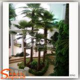 Garten-Pflanzen für Verkaufs-künstlicher Palm Leaf Ventilator-eingemachten Baum