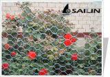 Rete metallica galvanizzata fiore del pollo del giardino di Sailin