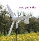 système d'alimentation de générateur de turbine de vent de 300W 12/24/48 V