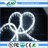 IP65 LEIDENE van Kerstmis Kabel Lichte 30LEDs