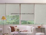 Tela de las persianas de ventana del rodillo de 38m m (SGD-R-4265)
