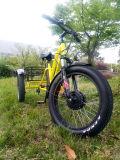 تصميم جديد سمين إطار العجلة 3 عجلة [تريك] كهربائيّة مع إطار العجلة سمين