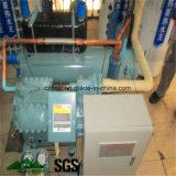 Unità/compressore di condensazione per conservazione frigorifera