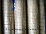 Непосредственно на заводе продажа сварной проволочной сеткой/PVC покрытием сварной проволочной сеткой