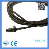 Shanghai Feilong Type de vis Thermocouple