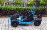 Meilleur vente en ligne de Blue 80cc Mini Power Kart pour enfants