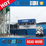 Congelatore messo in recipienti di Icesta 20t per carne/pesci