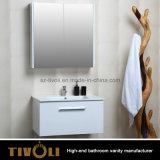 Gabinete de banheiro de madeira do projeto do punho da gaveta dobro (V004)