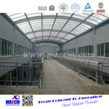 Ahorro de costes de alta calidad de almacén de acero
