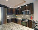 Projeto moderno da cozinha do restaurante do standard alto