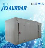 中国によって急速冷凍される低温貯蔵部屋