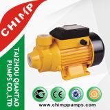 침팬지 작은 와동 Qb60 전기 수도 펌프 370watts