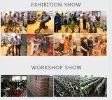 China 16 Zoll-Leichtgewichtler des X-Form Entwurfs-faltenden Fahrrades