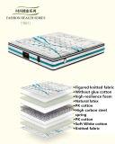 호화로운 자연적인 유액은 침실 가구 - Fb831를 위한 계산한 뜨개질을 한 직물 덮개를 가진 봄 매트리스를 압축했다