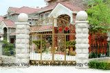 Haohanの良質の外部の機密保護の装飾的な錬鉄の塀のゲート19