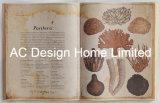 علم محيطات [بو] [لثر/مدف] خشبيّة كتاب شكل جدار فن
