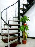 ステアケースショー(螺線形デザイン)の/Woodの階段か手すり