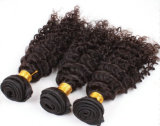 Kinky Curly Indian cabello tejido Virgen Remy Indian Cabello