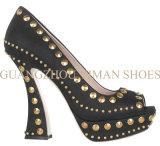2013 chaussures cloutées par femme de mode (YMS002186-01)