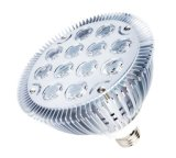 12*2W E26/E27 Base LED PAR Lamp (RL-PAR-38B12)