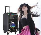 Biens mobiliers haut-parleur avec équipement DJ professionnel (T-101)
