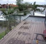 カスタマイズされたホーム柵のステンレス鋼のステアケースのガラス柵