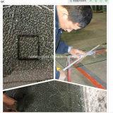 l'acido glassato traslucido decorativo del raso di 10mm ha inciso il portello di vetro della stanza da bagno