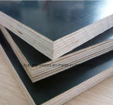 La película enfrenta de madera contrachapada de 1220x2440mm, 1250x2500mm