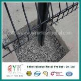 Покрынная PVC сваренная загородка ячеистой сети/твердое цена загородки сетки
