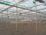 Intelligentes Glasc$multi-überspannung Landwirtschafts-Gewächshaus