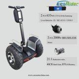 2 Rad Selbst-Ausgleich/balancierender elektrischer Roller für Weihnachtsgeschenk