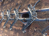 Lato del banco del giardino del metallo