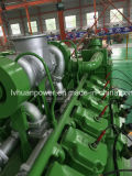 Générateur de gaz naturel de PCCE et de GNL de LPG CNG pour la centrale de l'électricité Genset 10kw à 600kw