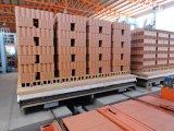 Neue Technologie-Tunnel-Brennofen für den Ziegelstein, der Fabrik bildet
