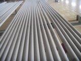 A213 de Naadloze Boiler van het Roestvrij staal ASTM, Oververhitter, en hitte-Ruilmiddel Buizen