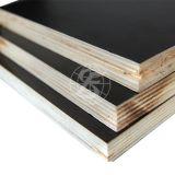 1220 * 2440mm impermeable madera contrachapada película hizo frente a la construcción