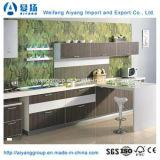 Edelstahl-Küche-Schrank mit den kundenspezifischen Entwürfen hergestellt in China